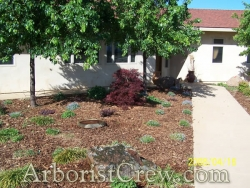 Drought-tolerant landscaper in Camarillo