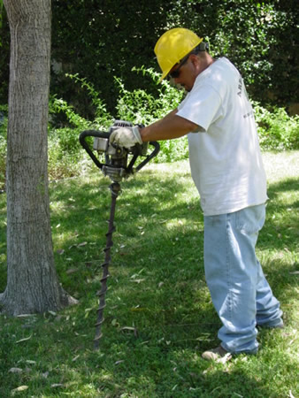 Deep root fertilization aerates the soil around your trees and shrubs, allowing for penetration of water and life-giving nutrients.