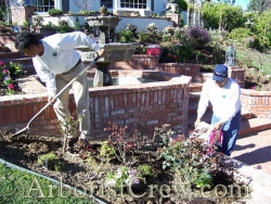 Ventura County landscapers working on a drought-resistant plant display.