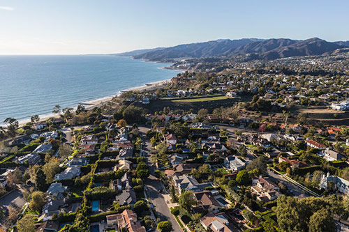 Tree Service in Pacific Palisades, California